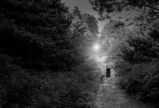 Elliot Ruby - Day to night.jpg