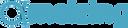 Logo ameizing.png