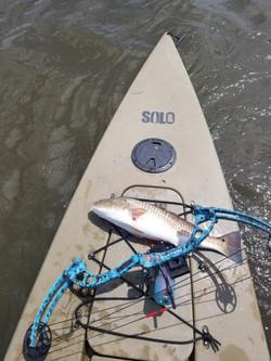 kayak fishing charter New Orleans LA