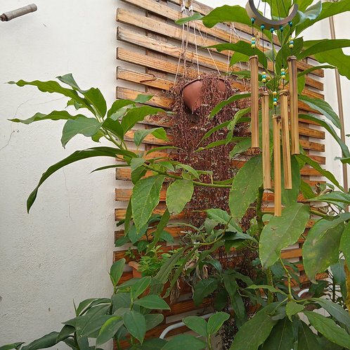 Sino Mensageiro dos Ventos de Bambu Harpa 40cm