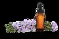 kisspng-essential-oil-lavender-oil-aroma