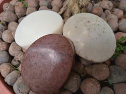 Kit com 3 sabonetes Aconchego