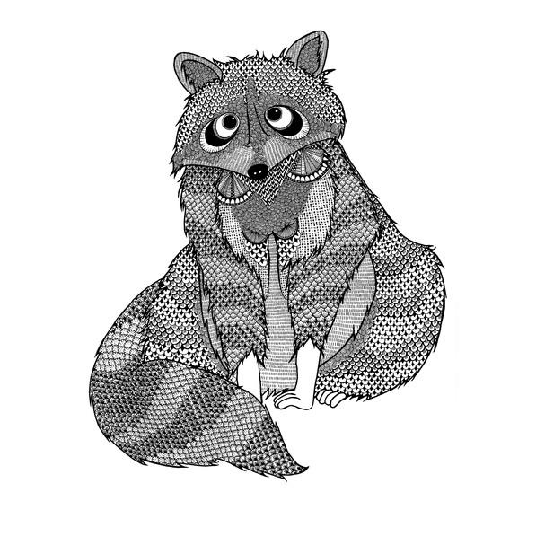 LEON the shy Racoon
