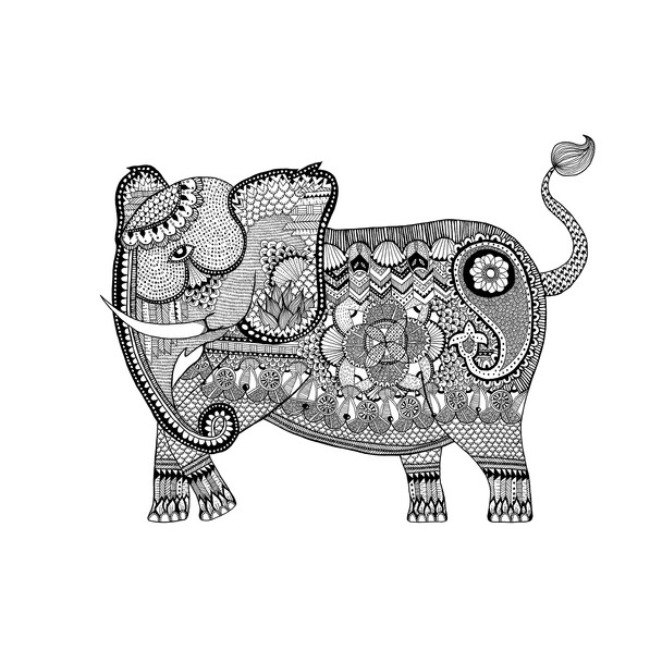 African Female Elephant