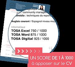 certification tosa cpf vba excel paris lyon marseille