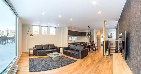 Ikigai living room.jpg