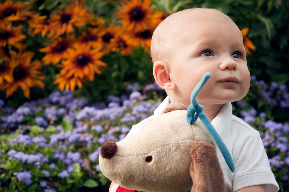 A baby's best friend, candid portraiture session