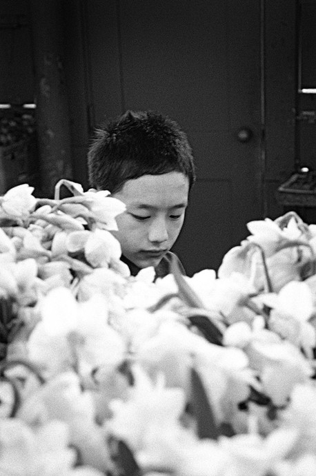 The softness of youth, Chinatown, Seattle  (35mm film)
