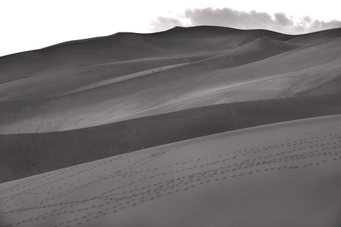 The fleshy rise of The Great Sand Dunes in Colorado