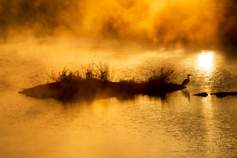 The rising of morning mist at sunrise in Mpumalanga, South Africa
