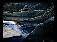 Waves of erosion in northern Sweden (120 film)