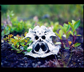Every skull has a face in northern Sweden (120 film)