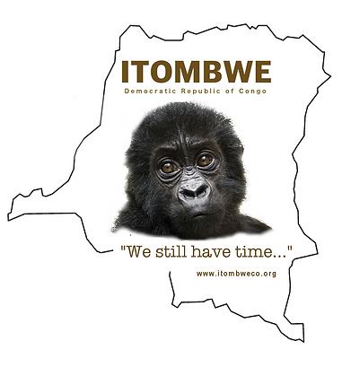 Itombwe T-Shirt Design (Back)