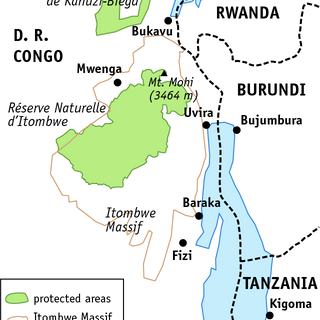 itombwe-reserve-e.png