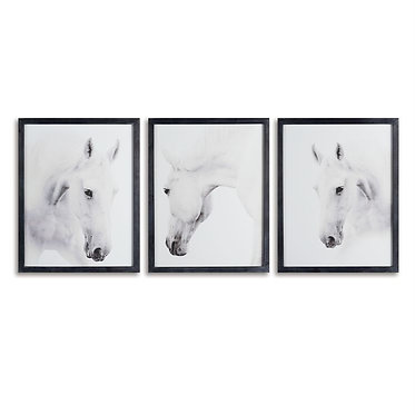 Framed Wild Horses Photographic Prints - Set of 3
