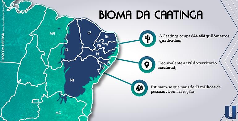 caatinga.png