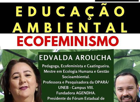 Videoconferência: Educação Ambiental e Ecofeminismo