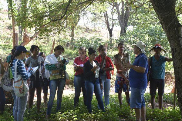 https://aspta.org.br/2020/05/28/redes-de-agroecologia-praticas-e-gestao-comum-nos-territorios/