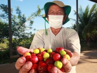 Bahia enfrenta pobreza com projetos que geram renda