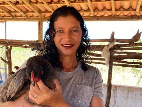 Produção de ovos de galinha caipira se torna fonte de renda para agricultores familiares de Glória