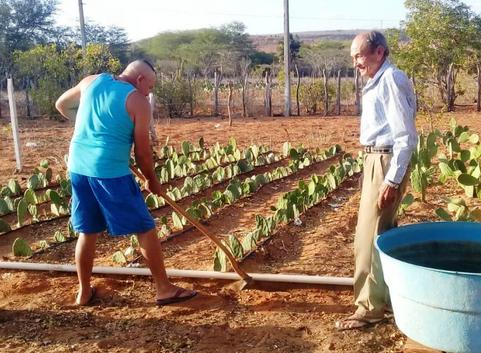 Conheça a RAMPA - Reserva Agroecológica de Mandacaru e Palma, Estratégia Agroecológica