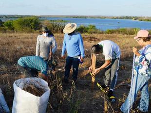 A AGENDHA implanta Unidade Demonstrativa para Sistemas Agroflorestais em Paulo Afonso/BA