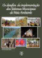 Capa do Livro Desafios.png