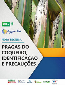 PRAGAS DO COQUEIRO.jpg