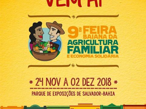 A AGENDHA leva o Território de Itaparica para a FEBAFES 2018