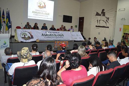 Incidencia_em_Politicas_Púbicas.jpg