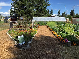 Gathering Garden 4.jpg