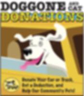 Doggone 4.jpg