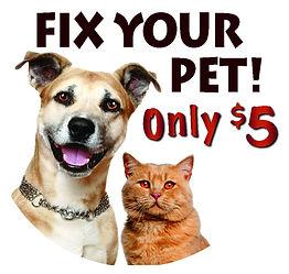 Dog-Cat Icon 1.jpg