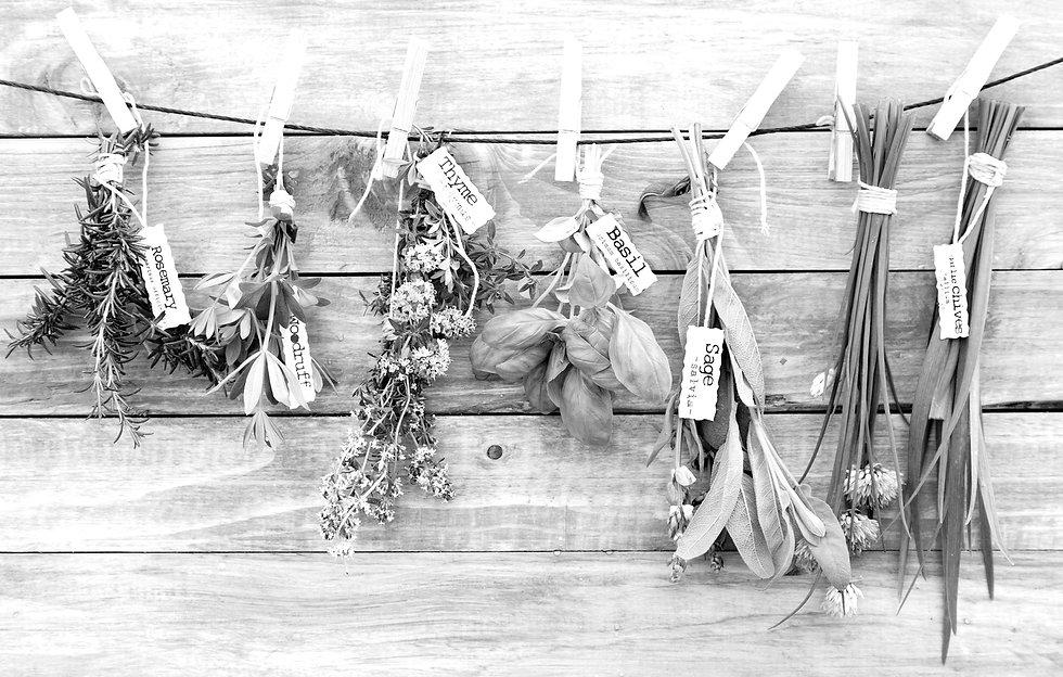 Hanging Herbs_edited.jpg