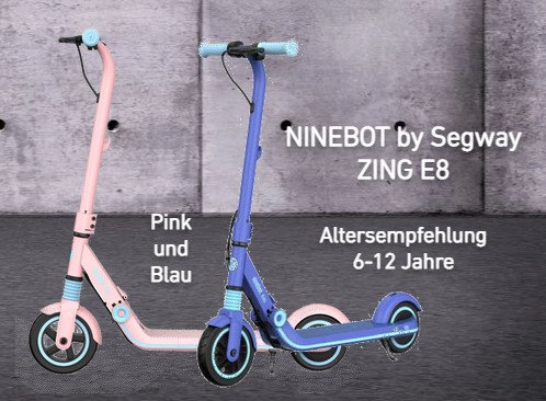 Ninebot eKickScooter ZING E8 (powered by Segway)