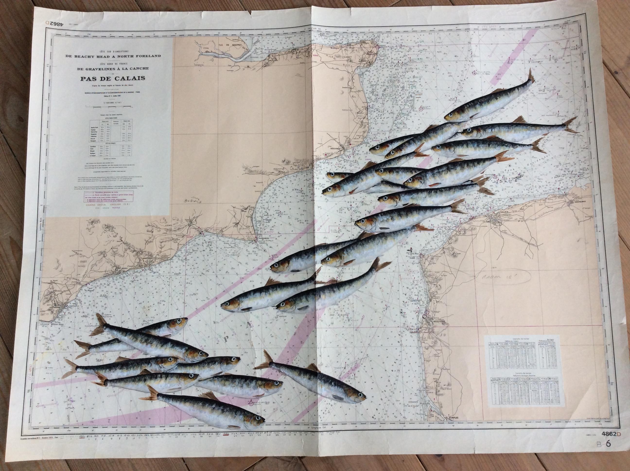 Carte du Pas de Calais
