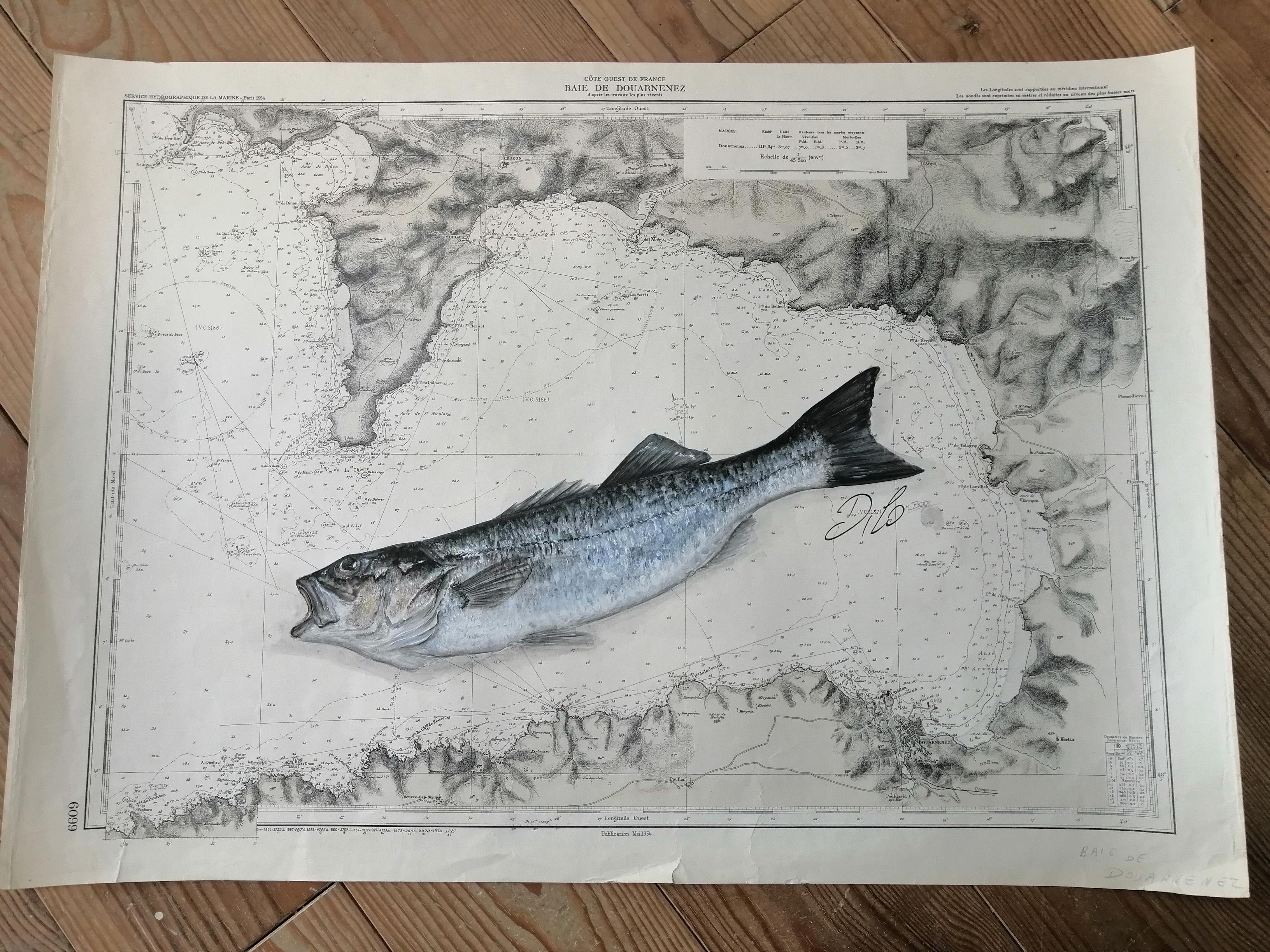 bar et sardines