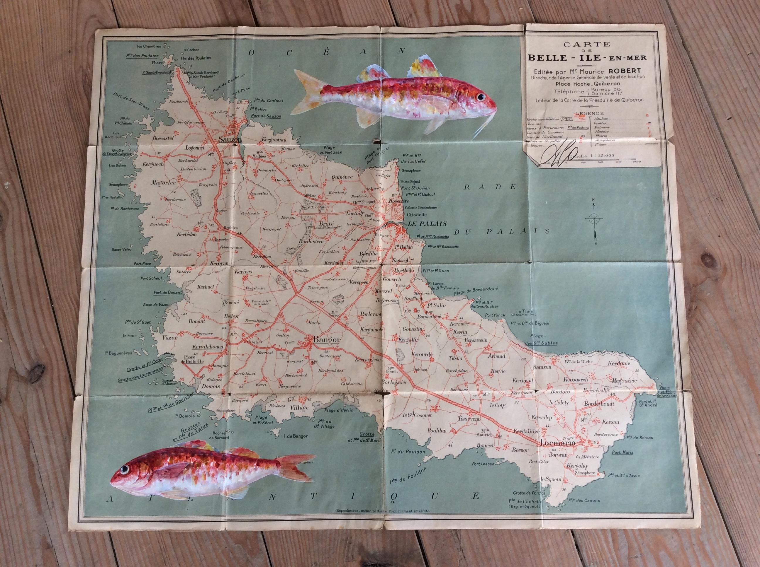 Carte de Belle Ile