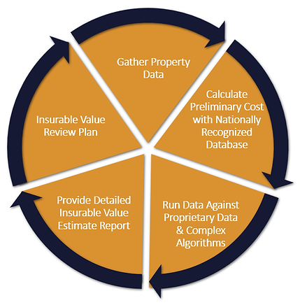 Our Insurable Value Process