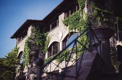 40-castello-sposi-edera-matrimonio.jpg