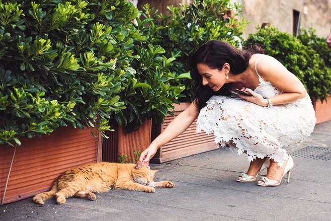 37-sposa-gatto-street-reportge.jpg