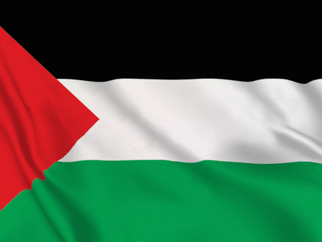 AED Stands With Palestine