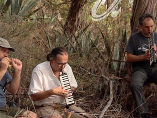 #domesticsounds. Sesiones de Atalaya - Tony Peña, José Guillén, Atilio Doreste