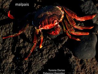 malpaís - Zebenzui González y Yurena Darias