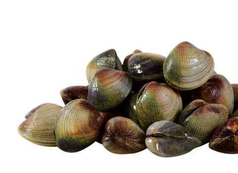 Shellfish_Cockles_zps0b5a711d_large