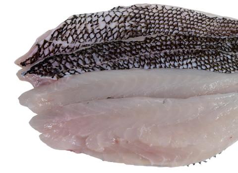 Fish_BlackSeaBassOverhead_zpsa52addee_large