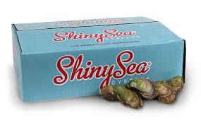 huitres-shinny-sea