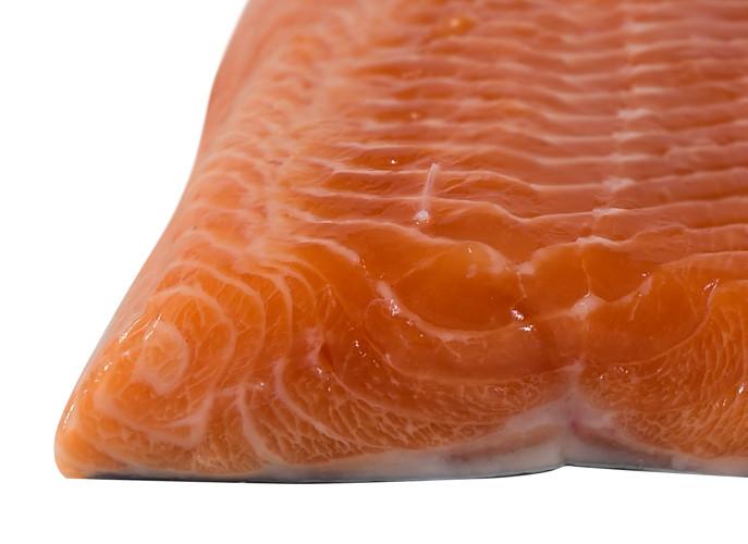 Fish_ArcticChar_zps1a589f2c