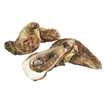 huitres-malpeque-standard