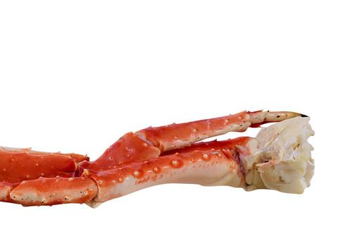 Crab_KingCrab_zps1f1fcd34_large